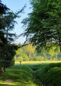 eenzaamheid mindfulness rust in de kop